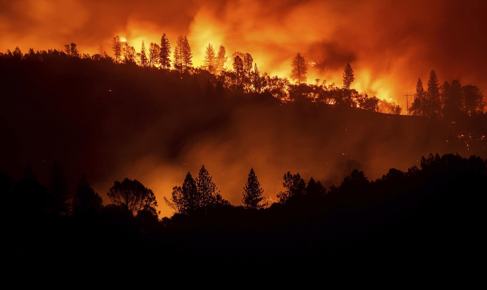 Уровень углекислого газа в атмосфере Земли достиг рекордного содержания за всю историю человечества