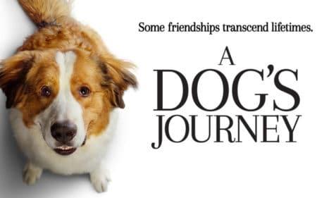 Рецензия на фильм «Путешествие хорошего пса» / A Dog's Journey