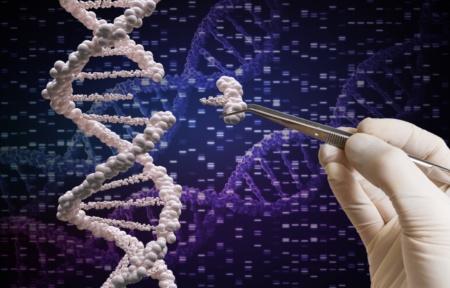 Учёные превратили CRISPR в «генетический швейцарский нож»
