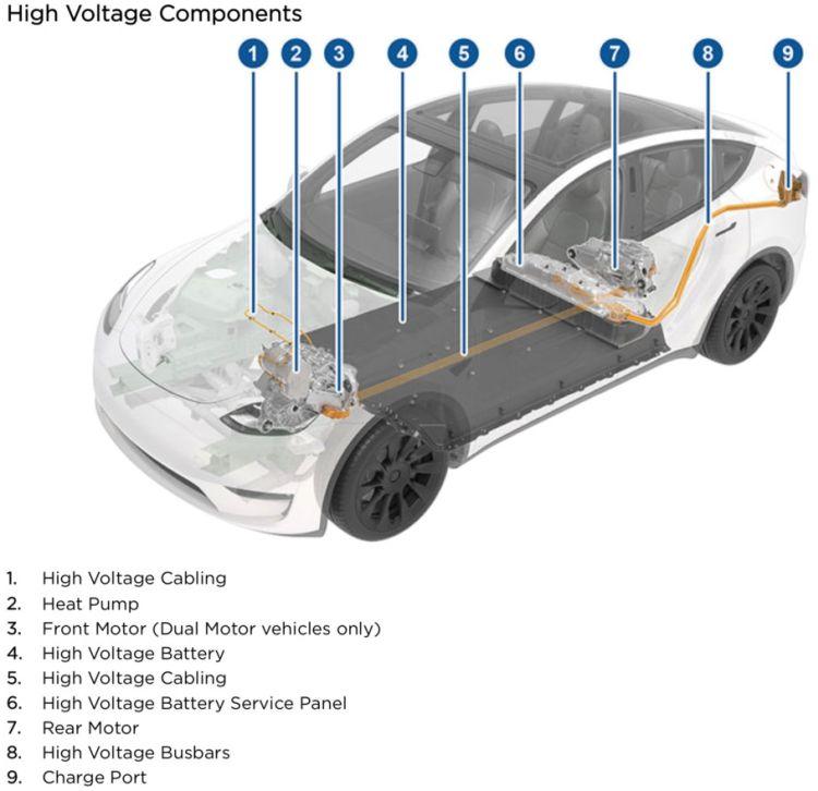 Tesla начала доставлять новые кроссоверы Model Y в США [первые видеообзоры]