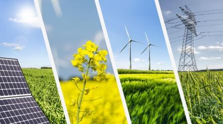 В Минэнерго предлагают запретить строительство новых солнечных и ветровых электростанций