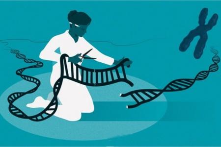 Нобелевскую премию по химии присудили за метод редактирования генома CRISPR/Cas