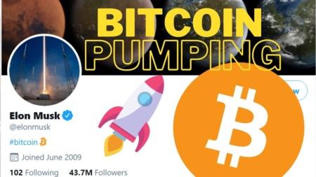Илон Маск тегнул #bitcoin, который возглавил тренды Twitter — курс криптовалюты резко рванул вверх (+ обновление по конфликту между WallStreetBets и Robinhood)